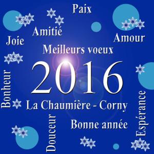 VOEUX 2016 web